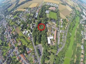 Der Standort des Baumhauses